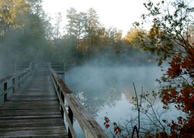 Fall mist on water