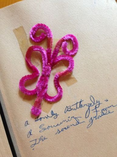 A pipe-cleaner butterfly and my own cursive handwriting